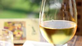 Homemade Muscadine Wine