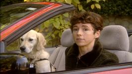 Pet Friends Series 1, PF110 - The Traveling Pet