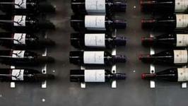 Shopping At Cellar Rat Wine Shop