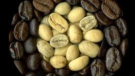 Coffee A La Mode