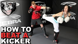 How to Beat a Kicker - TaekwondoKarate-Style with Punches