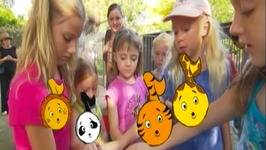 At The Zoo Animal Song  - Learn Animals Songs