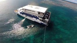 Diving the Great Barrier Reef - Travel Deeper Australia (Episode 3)