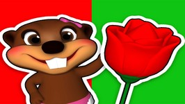 Red Flower - Early Childhood Education - Baby Beavers Teach Colors - Song for Kids