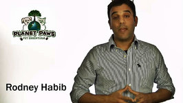 Pet X Talks - Rodney Habib - Ingredients in our Pet Foods - GMOs, Corn & Other Issues