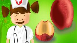 Nina's Nutrition Tips - Tip  9 Apples