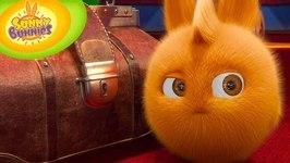 Sunny Bunnies 106 - Magician's Suitcase