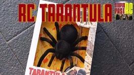 RC Tarantula Review for Halloween