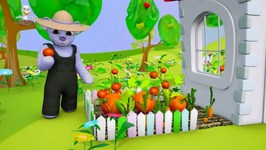 Kids Cartoons In 3D Animation  How Do Plants And  Flowers Grow