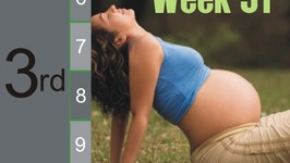 Pregnancy - Third Trimester: Week 31