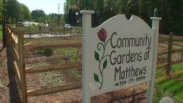 Do Your Part Start A Community Garden