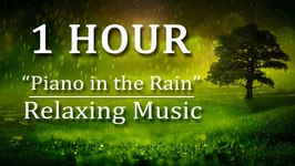 1 Hour Relaxing Music Piano in the Rain Gentle Piano Music with Relaxing Nature Rain Sounds