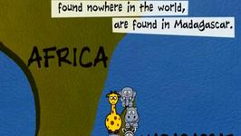 Madagascar - Fun Fact Series