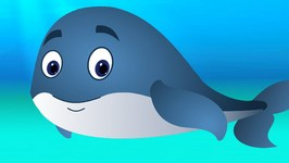 Blue Whale Song  ChuChuTV Sea World  Animal Songs For Children