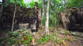 Two ancient cities discovered in the Mexican jungle