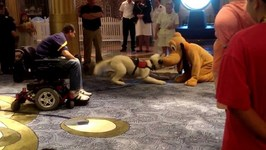A Service Dog Meets Pluto Aboard The Disney Fantasy