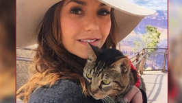 Nina Dobrev Takes Cat on Road Trip