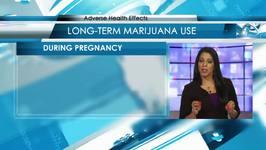 Adverse Effects of Marijuana Use
