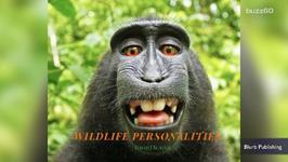 PETA Sues To Give Monkey Copyright Ownership Of Selfie
