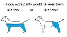 Dog Pants' Is The Hottest Internet Debate Since 'The Dress'