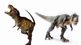 How Much Did The T-Rex Weigh?
