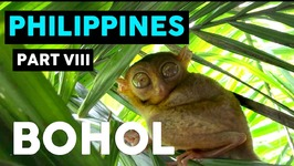 TOUR OF BOHOL, PHILIPPINES - THE ULTIMATE DAY OF ADVENTURE