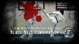 Taekwondo Advanced Kicking Combination 2 (Taekwonwoo.net)