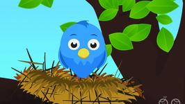 Little Birdie Song