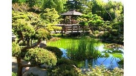 Visiting The Japanese Tea Garden At Golden Gate Park