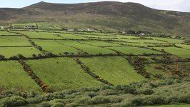 British Isles - Bath, York, Lake District, Edinburgh, Galway, Dingle, Kilarney, Kinsale and Dublin