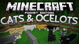 Ocelots Cats In Mcpe Tamable Ocelot Mod Minecraft Pe Pocket