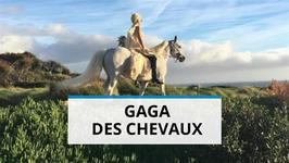 Un trs (trs) gros cadeau de Nol pour Lady Gaga