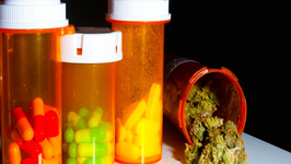 Legalizing Marijuana Equals Lower Prescription Drug Deaths