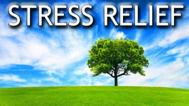 Guided Relaxation for Stress Relief
