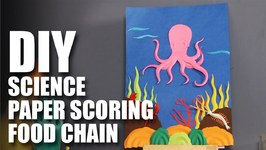 Mad Stuff With Rob  DIY Paper Scoring - Food Chain- DIY Science- DIY Science Project