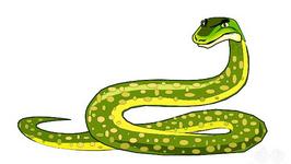 Do Snakes Have Bones?