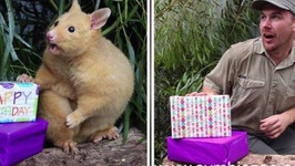 Zookeepers Copy Animal Poses In Hilarious Viral Photos