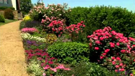 The Best Site For Your Rose Garden