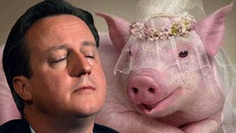 David Cameron in Sex Scandal With Dead Pig