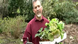 April Gardening Tips - Vegetable Garden