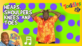 Head Shoulders Knees And Toes  SILLY SONGS  Toddles TV