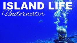 Island Life - Underwater