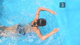 How To Do Butterfly Stroke For Beginners