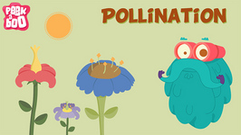Parts of a Flower and Pollination - The Dr. Binocs Show