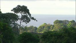 Costa Rica: Corcovado National Park