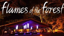 Port Douglas Rainforest Dining And Aboriginal Cultural Experience