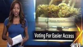 Reporter Drops F-bomb and Quits On Air to be Legal Marijuana Advocate