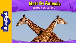 Meet the Animals 16 - Giraffe - Animated Stories by Little Fox