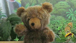Museum Takes Lost Teddy Bear On Social Media Adventure To Search For Owner