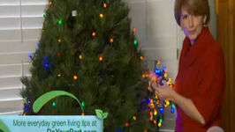 Do Your Part: Greener Holiday Lights